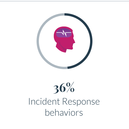 36 Incident Response